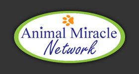 Animal Miracle Network